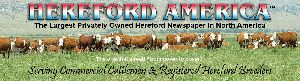 HereFord America image